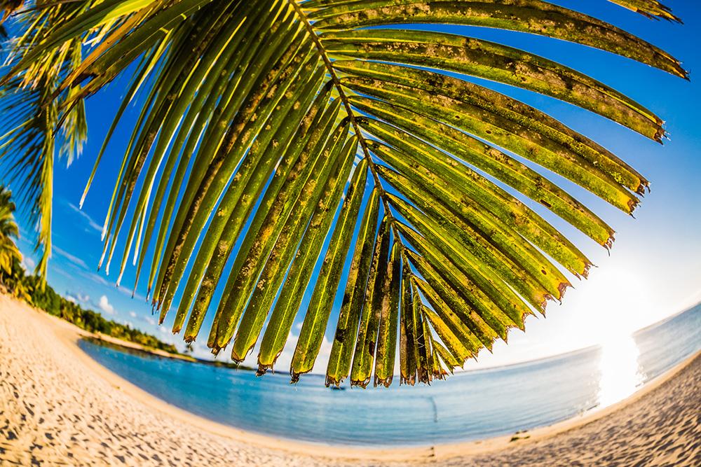 fotografie-mauritius